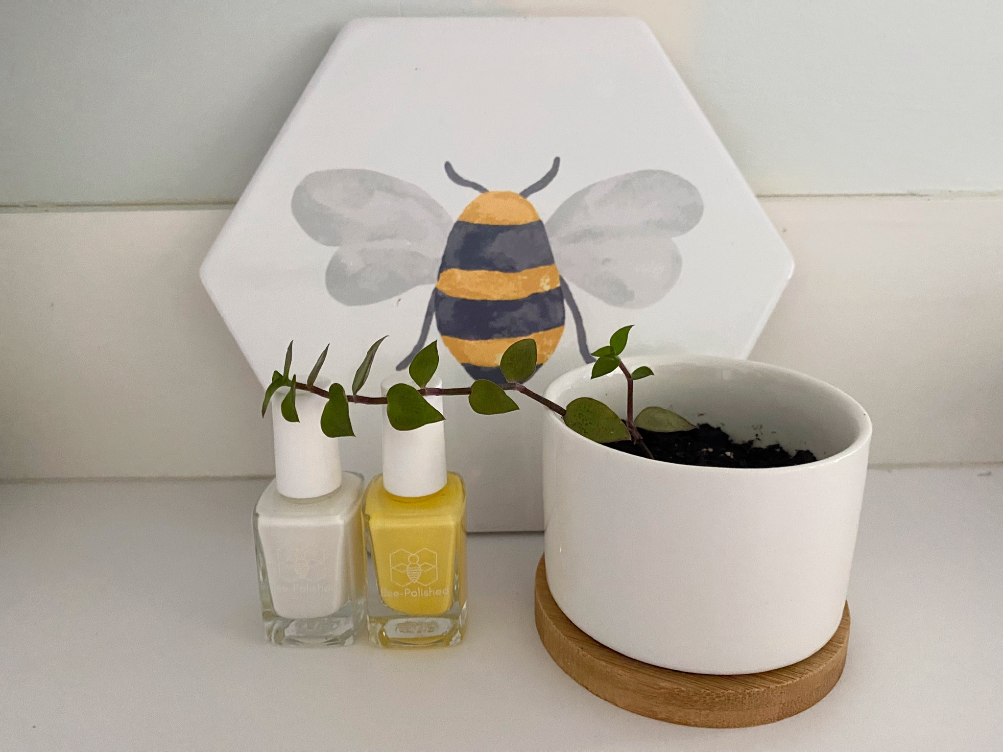 Starting Your Bee-Causes Business